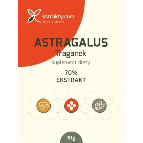 Astragalus (Traganek) ekstrakt 70% polisacharydów
